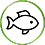 Z rybą