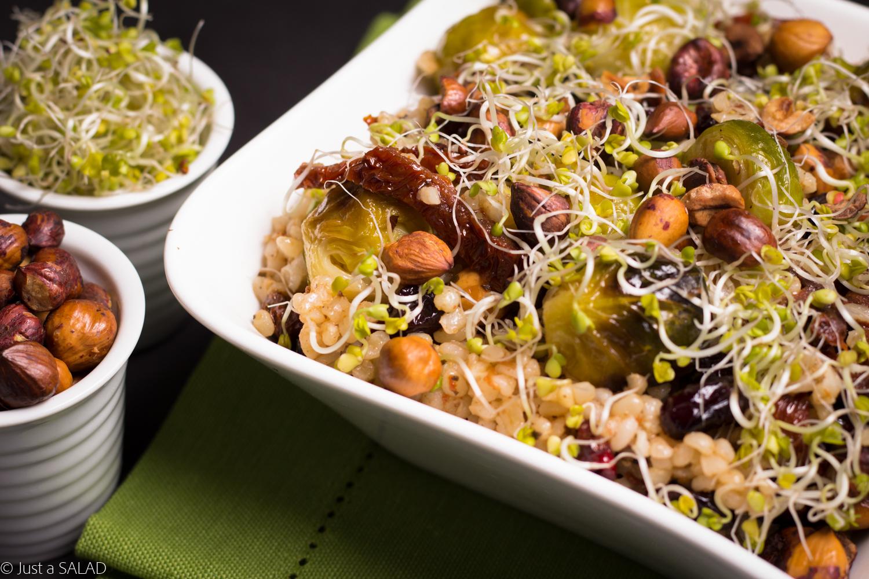 Sałatka z bulgurem, brukselką, suszonymi pomidorami, żurawiną, kiełkami brokuła i orzechami laskowymi.
