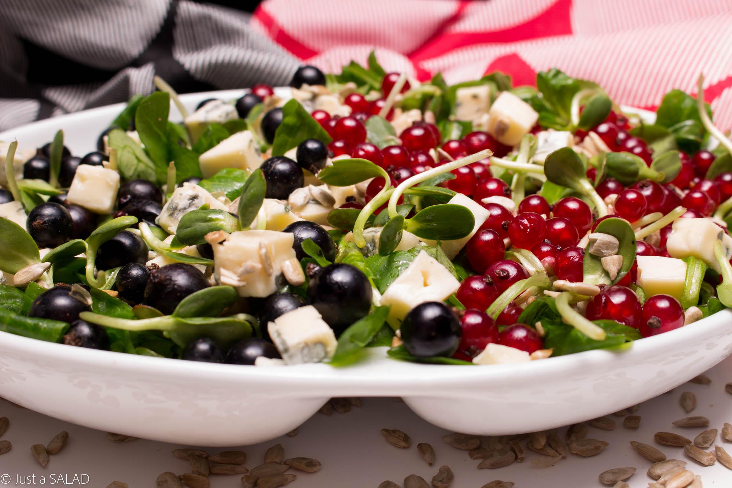 Sałatka z roszponką, porzeczkami, serem z niebieską pleśnią, pestkami i kiełkami słonecznika.