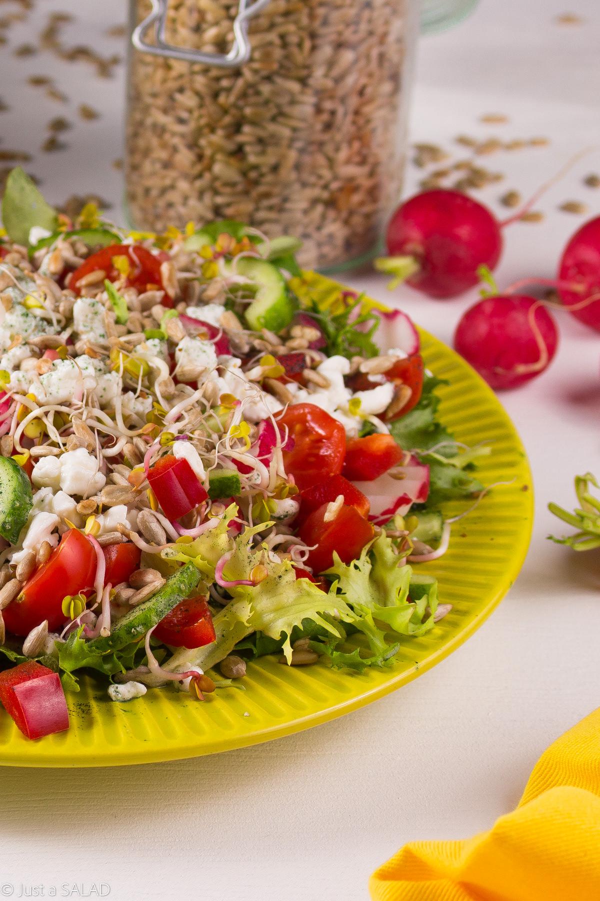 Wiejski KonseSEREK. Twarożek z serkiem wiejskim, mixem sałat oraz ogórkami, rzodkiewkami, pomidorkami, papryką, kiełkami rzodkiewki, pestkami słonecznika i dodatkiem spiruliny.